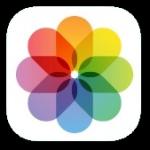 お気に入りの写真をiPadの壁紙にする方法